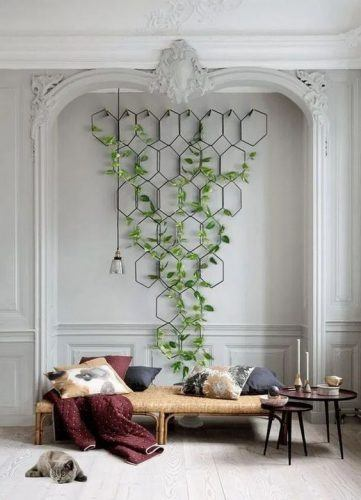 Tendinte in Designul Interior in 2021 plante de interior